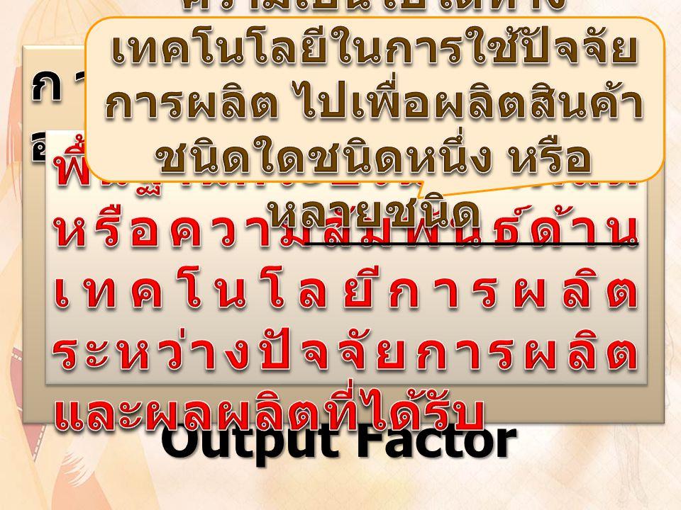 Input Factor Process Output Factor