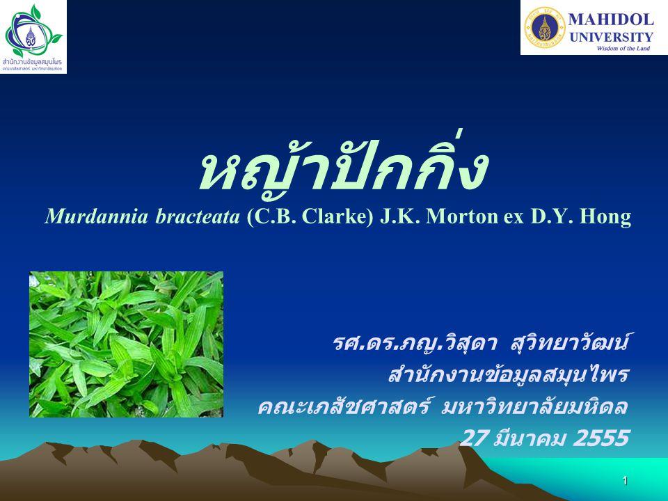 1 หญ้าปักกิ่ง Murdannia bracteata (C.B. Clarke) J.K. Morton ex D.Y. Hong รศ. ดร. ภญ. วิสุดา สุวิทยาวัฒน์ สำนักงานข้อมูลสมุนไพร คณะเภสัชศาสตร์ มหาวิทยา