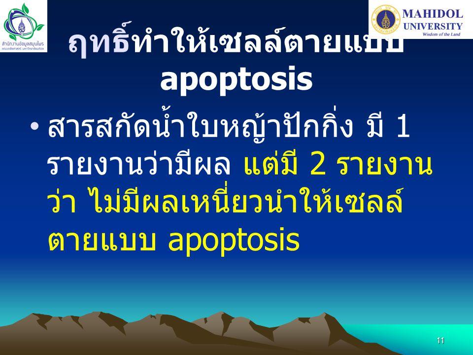 11 ฤทธิ์ทำให้เซลล์ตายแบบ apoptosis • สารสกัดน้ำใบหญ้าปักกิ่ง มี 1 รายงานว่ามีผล แต่มี 2 รายงาน ว่า ไม่มีผลเหนี่ยวนำให้เซลล์ ตายแบบ apoptosis