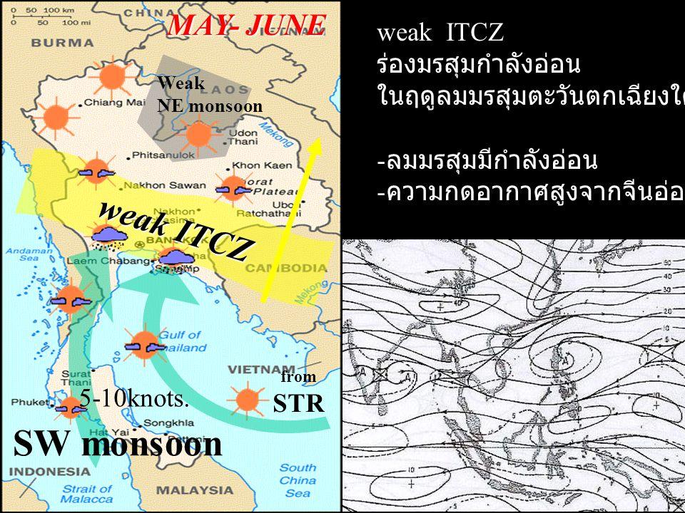 weak ITCZ MAY- JUNE SW monsoon weak ITCZ ร่องมรสุมกำลังอ่อน ในฤดูลมมรสุมตะวันตกเฉียงใต้ - ลมมรสุมมีกำลังอ่อน - ความกดอากาศสูงจากจีนอ่อนกำลังลง Weak NE