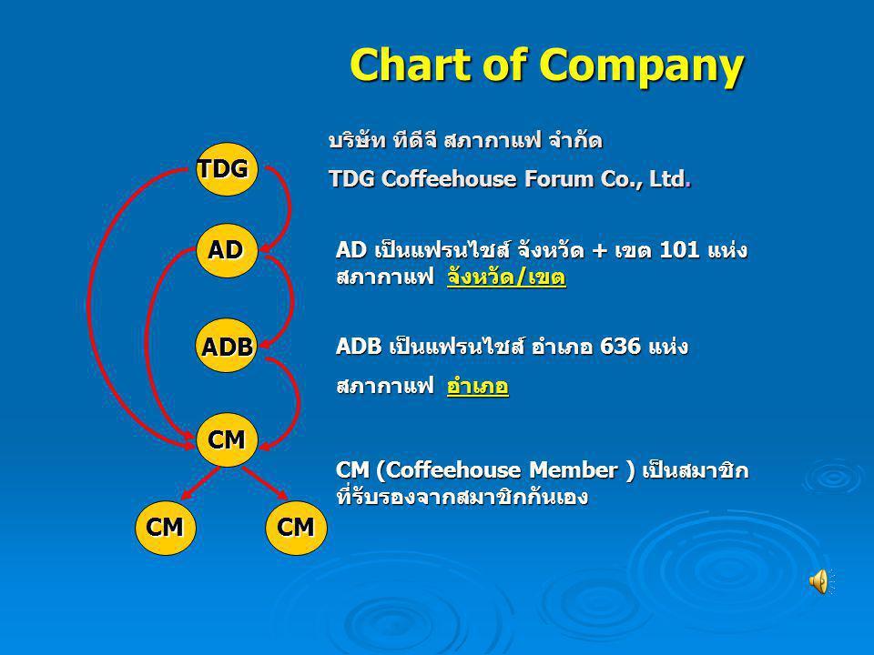 Chart of Company บริษัท ทีดีจี สภากาแฟ จำกัด TDG Coffeehouse Forum Co., Ltd. AD เป็นแฟรนไชส์ จังหวัด + เขต 101 แห่ง สภากาแฟ จังหวัด/เขต ADB เป็นแฟรนไช
