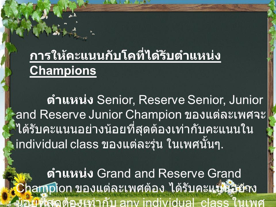 การให้คะแนนกับโคที่ได้รับตำแหน่ง Champions ตำแหน่ง Senior, Reserve Senior, Junior and Reserve Junior Champion ของแต่ละเพศจะ ได้รับคะแนนอย่างน้อยที่สุดต้องเท่ากับคะแนนใน individual class ของแต่ละรุ่น ในเพศนั้นๆ.