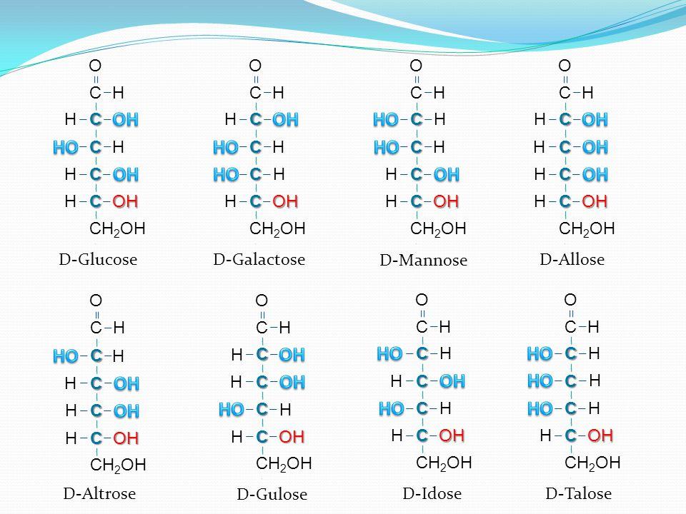 C H C C C C O H H OH H H C H C C C C O H H OH H H C H H C C C C O H OH H H C H C C C C O H H OH H H D-GlucoseD-Galactose D-Mannose H C C C C CH 2 OH O