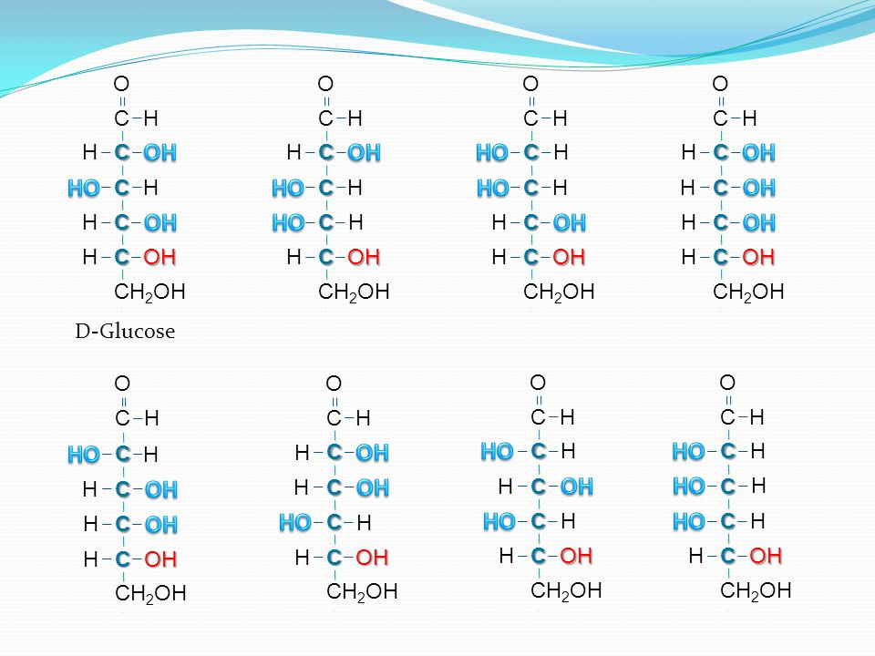C H C C C C O H H OH H H C H C C C C O H H OH H H D-Glucose C H C C C C CH 2 OH O H H OH H H D-Galactose C H H C C C C CH 2 OH O H OH H H D-Mannose H C C C C CH 2 OH OH H H H C O H C H C C C C O H H OH H H C H H C C C C O H OH H H C H H C C C C O H OH H H