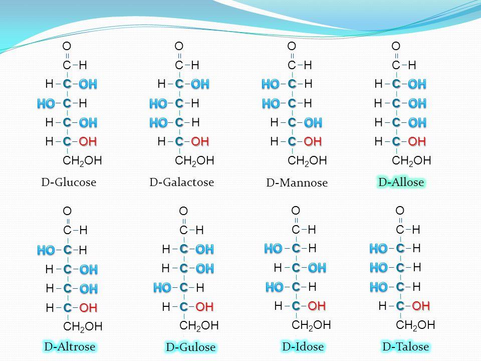 C H C C C C O H H OH H H C H C C C C O H H OH H H D-Glucose C H C C C C CH 2 OH O H H OH H H D-Galactose C H H C C C C CH 2 OH O H OH H H D-Mannose H
