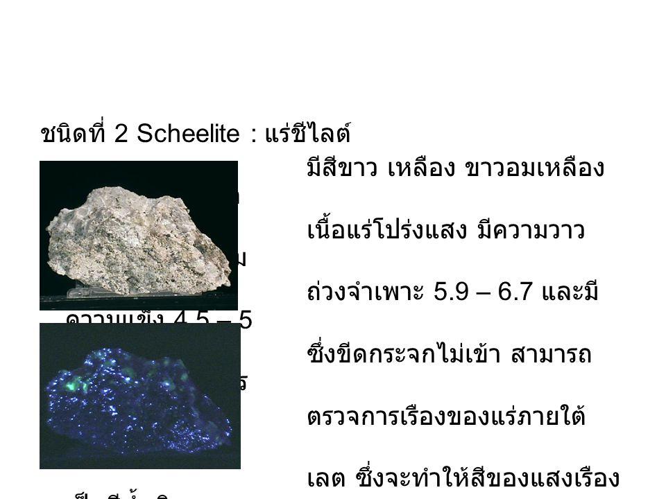 ชนิดที่ 2 Scheelite : แร่ชีไลต์ มีสีขาว เหลือง ขาวอมเหลือง เขียว และน้ำตาล เนื้อแร่โปร่งแสง มีความวาว คล้ายแก้ว มีความ ถ่วงจำเพาะ 5.9 – 6.7 และมี ความ