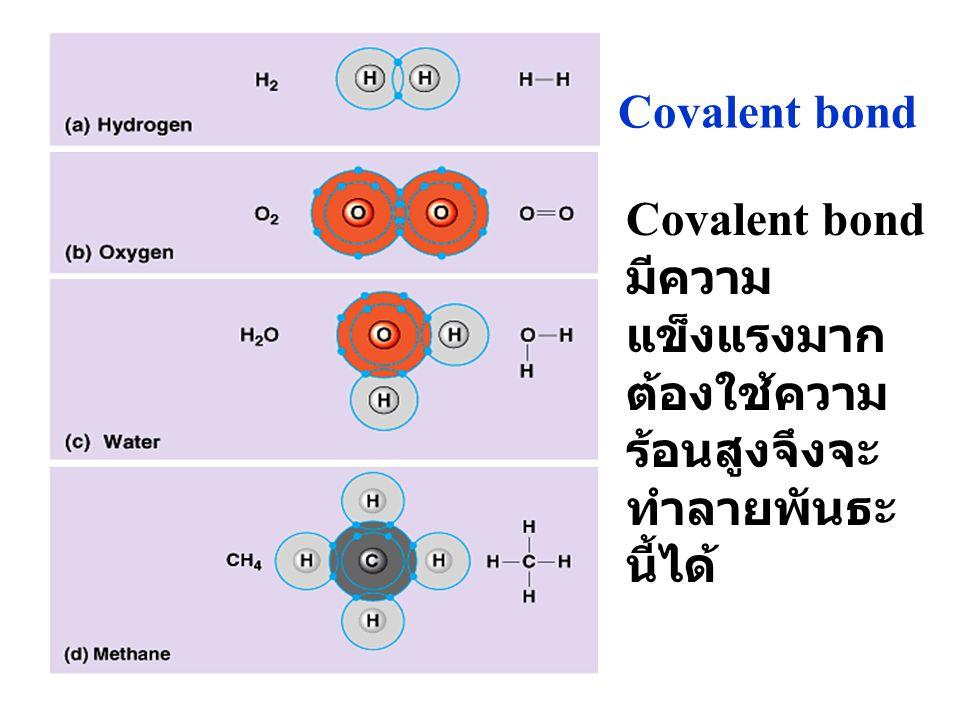 Covalent bond Covalent bond มีความ แข็งแรงมาก ต้องใช้ความ ร้อนสูงจึงจะ ทำลายพันธะ นี้ได้