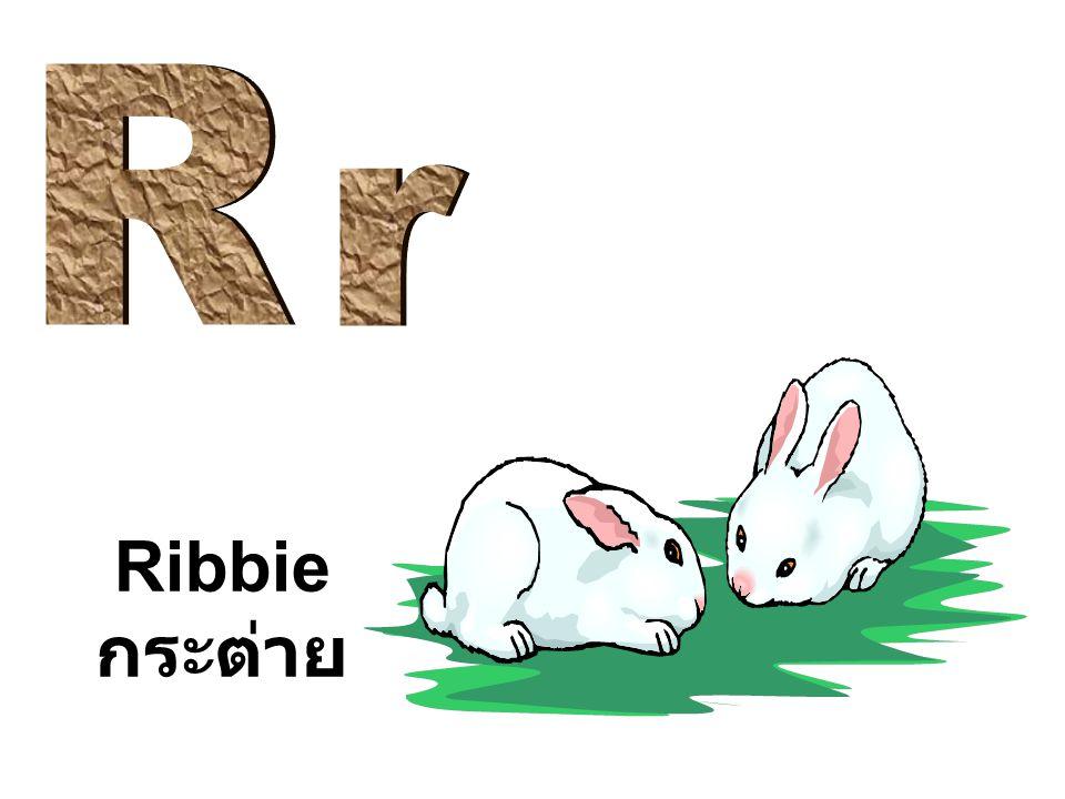 Ribbie กระต่าย