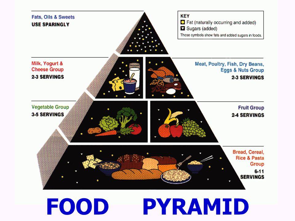 สารอาหาร โปรตีน กรดอมิโน คาร์โบไฮเดรท น้ำตาลโมเลกุลเดี่ยว ไขมัน กรดไขมัน วิตามิน เกลือแร่ น้ำ