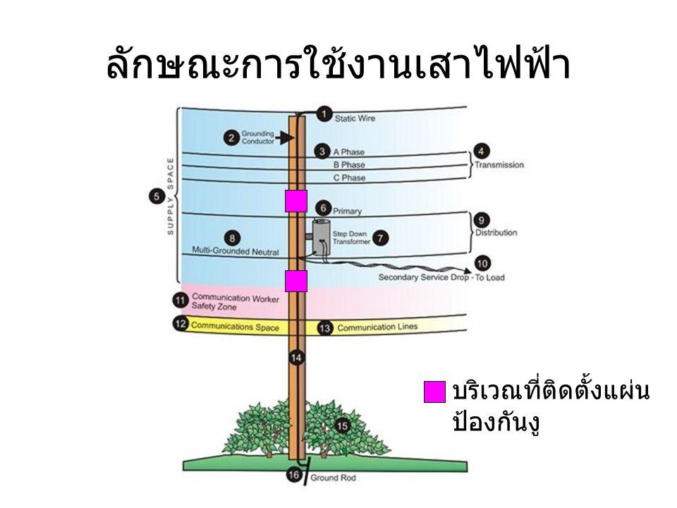 ลักษณะการใช้งานเสาไฟฟ้า บริเวณที่ติดตั้งแผ่น ป้องกันงู