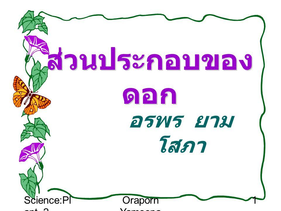 Science:Pl ant_2 Oraporn Yamsopa 2 สืบพันธุ์แบบอาศัย เพศ การสืบพันธุ์แบบอาศัยเพศ ของพืช เป็นลักษณะของการสืบพันธุ์ ของพืชชั้นสูง ซึ่งเป็นพืชที่มีดอกและ ใช้ดอกเป็นอวัยวะสืบพันธุ์