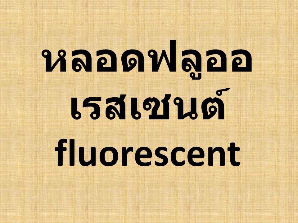 หลอดฟลูออ เรสเซนต์ fluorescent