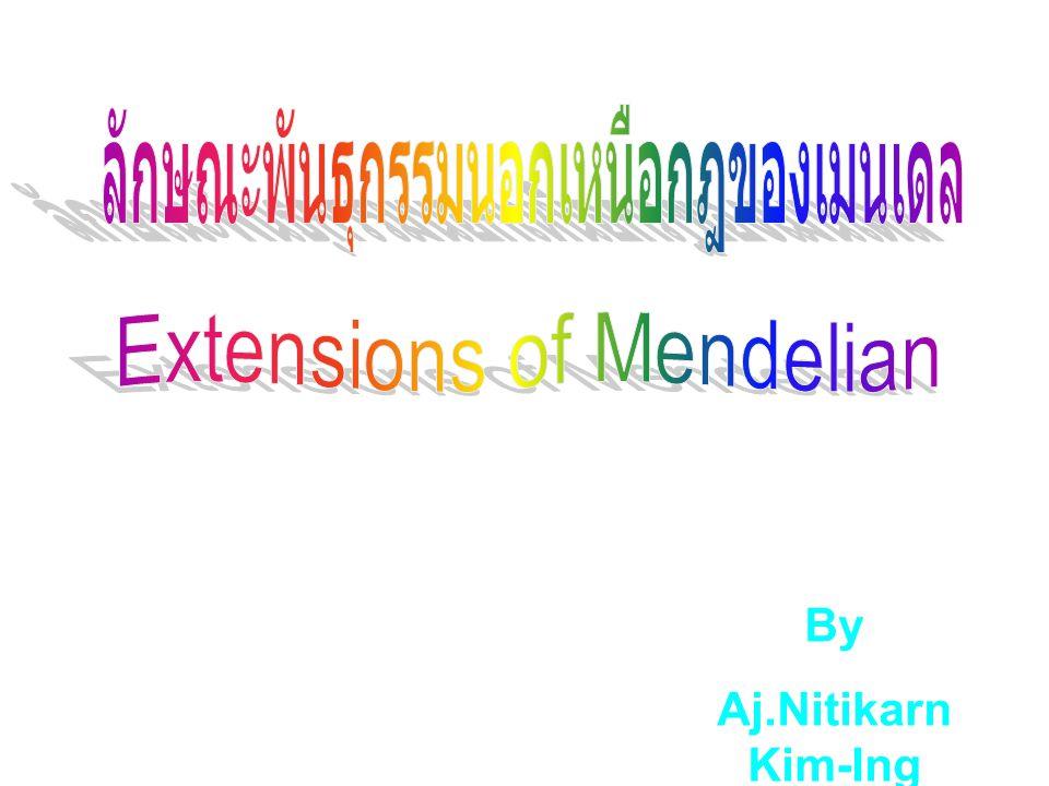 By Aj.Nitikarn Kim-Ing