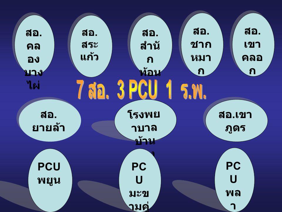 PCT ดูแลผู้ป่วยเบาหวาน ความดัน โลหิตสูง โรคหลอดเลือดสมอง CUP บ้านฉาง โรงพยาบาลบ้านฉาง