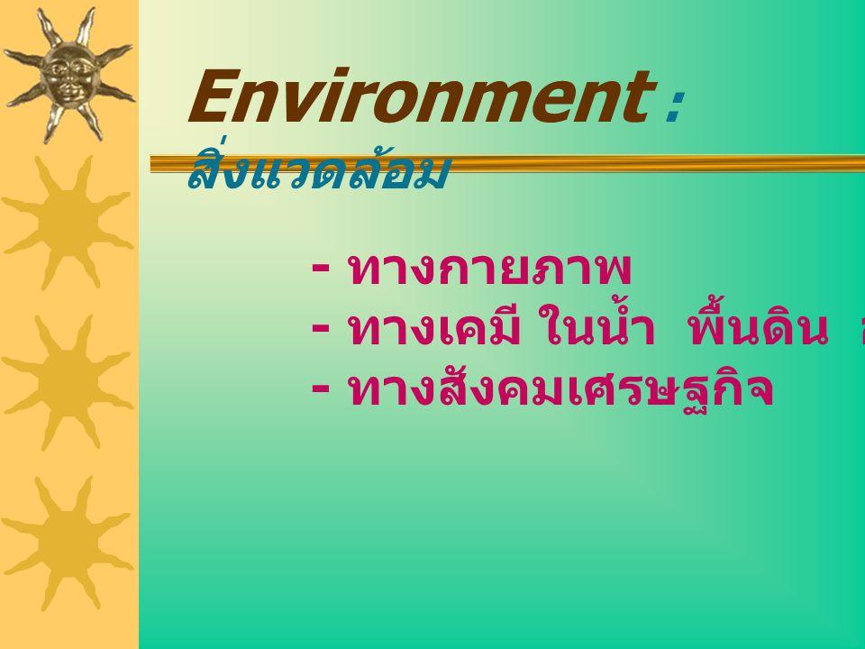 Environment : สิ่งแวดล้อม - ทางกายภาพ - ทางเคมี ในน้ำ พื้นดิน อากาศ - ทางสังคมเศรษฐกิจ