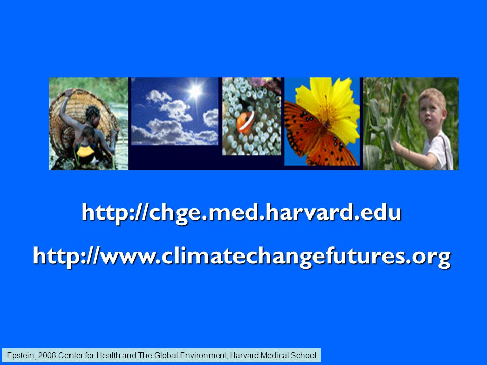 CO 2, Climate Change and Health Ragweed Poison Ivy Lyme * WNV * Mushroom spores Heatwaves & smog Particulates & pollen Mold Tree pollen Stalks Pollen 2X CO 2 Agricultural weeds Epstein, 2008 Center for Health and The Global Environment, Harvard Medical School