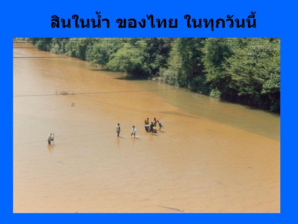 สินในน้ำ ของไทย ในทุกวันนี้
