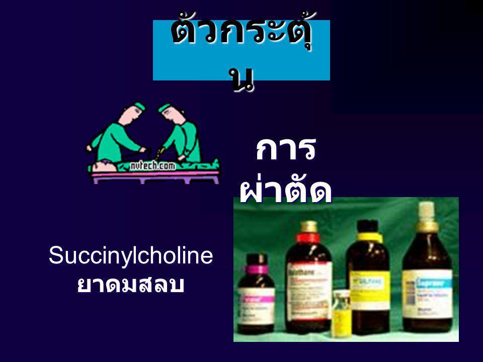 ตัวกระตุ้ น การ ผ่าตัด Succinylcholineยาดมสลบ