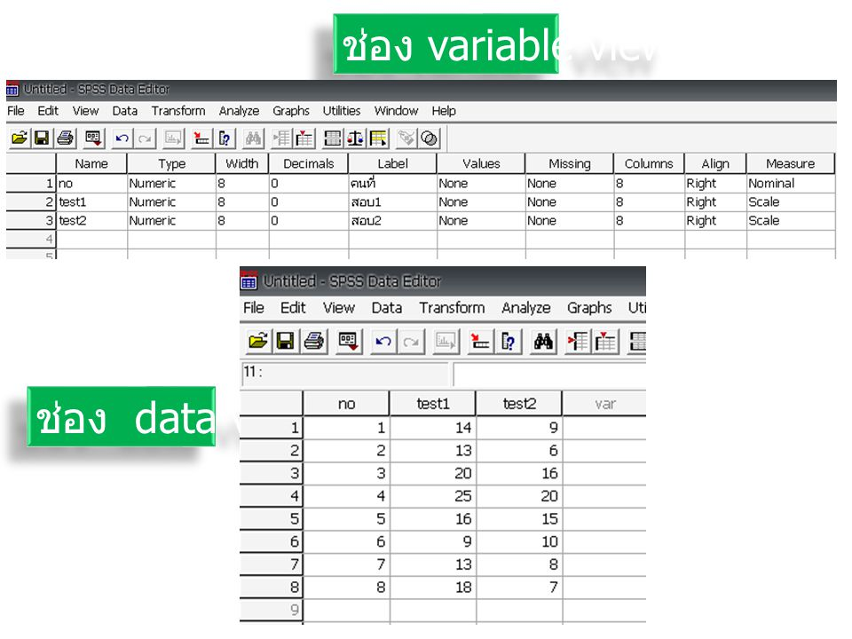 ช่อง variable view ช่อง variable view ช่อง data view ช่อง data view