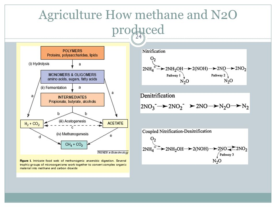Agriculture How methane and N2O produced 24