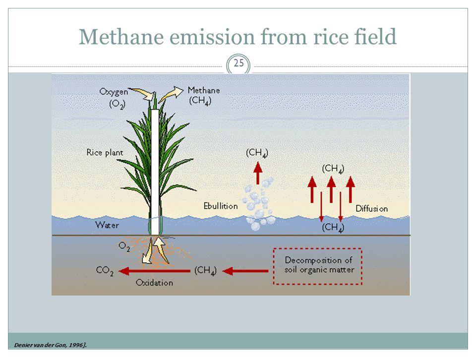 Methane emission from rice field 25 Denier van der Gon, 1996].