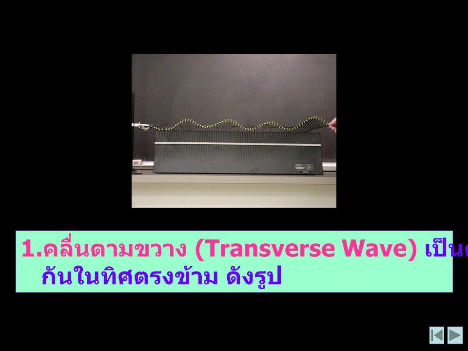 1. คลื่นตามขวาง (Transverse Wave) เป็นคลื่นที่ทำให้เกิดส่วนที่โค้งสลับ กันในทิศตรงข้าม ดังรูป