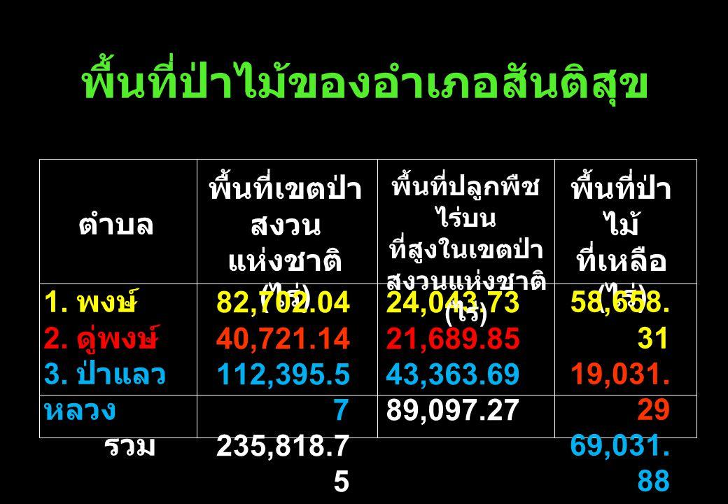 พื้นที่ป่าไม้ของอำเภอสันติสุข ตำบล พื้นที่เขตป่า สงวน แห่งชาติ ( ไร่ ) พื้นที่ป่า ไม้ ที่เหลือ ( ไร่ ) 82,702.04 40,721.14 112,395.5 7 235,818.7 5 58,