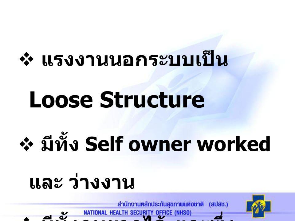  แรงงานนอกระบบเป็น Loose Structure  มีทั้ง Self owner worked และ ว่างงาน  มีทั้งคนยากไร้ และพึ่ง ตัวเองได้