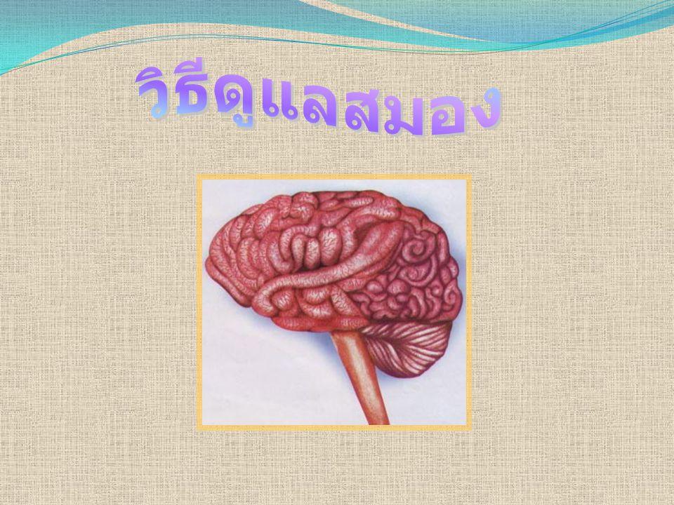 วิธีดูแล สมอง 1.พยายามขับถ่ายระหว่างเวลา 05.00 – 07.00 น.