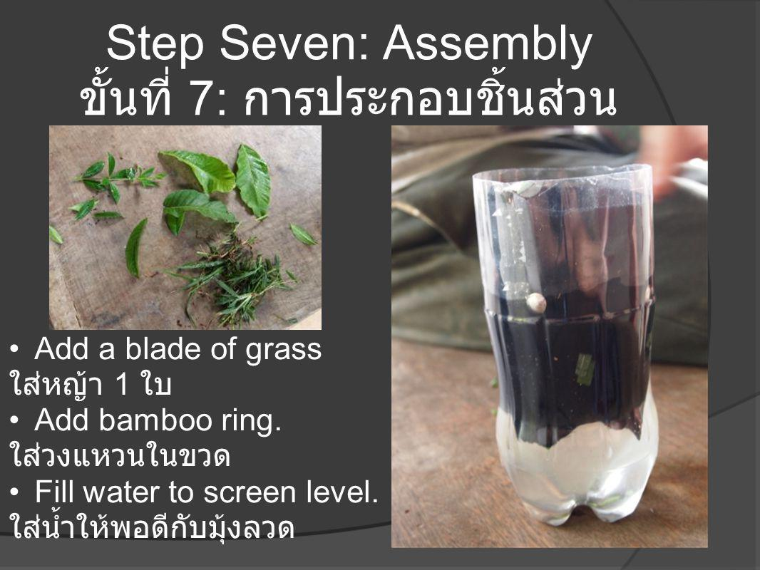 Step Seven: Assembly ขั้นที่ 7: การประกอบชิ้นส่วน •Add a blade of grass ใส่หญ้า 1 ใบ •Add bamboo ring. ใส่วงแหวนในขวด •Fill water to screen level. ใส่