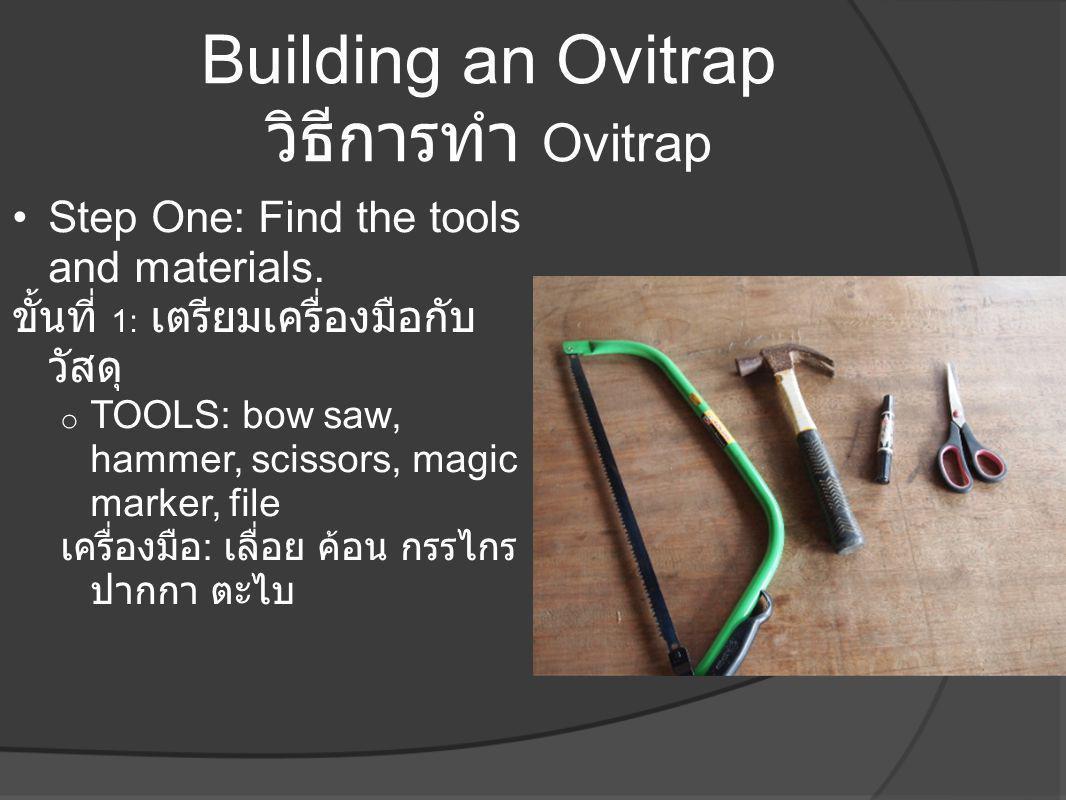 Building an Ovitrap วิธีการทำ Ovitrap •Step One: Find the tools and materials. ขั้นที่ 1: เตรียมเครื่องมือกับ วัสดุ o TOOLS: bow saw, hammer, scissors