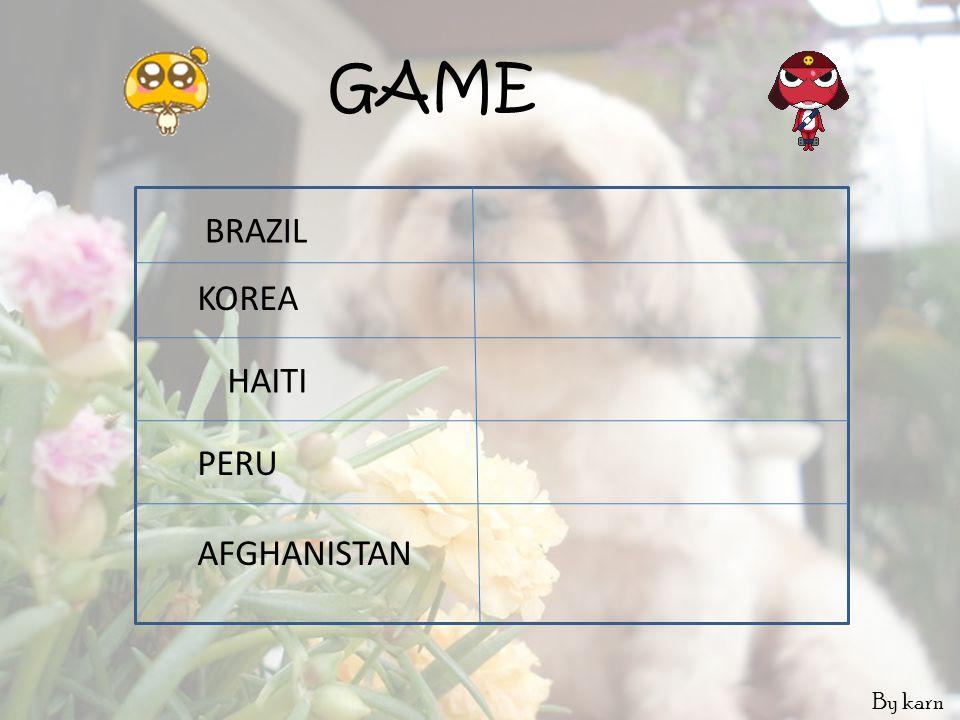 GAME BRAZIL KOREA HAITI PERU AFGHANISTAN By karn