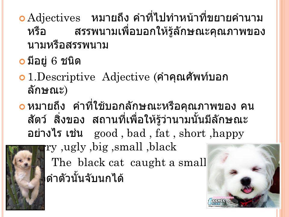 Adjectives หมายถึง คำที่ไปทำหน้าที่ขยายคำนาม หรือ สรรพนามเพื่อบอกให้รู้ลักษณะคุณภาพของ นามหรือสรรพนาม มีอยู่ 6 ชนิด 1.Descriptive Adjective ( คำคุณศัพ