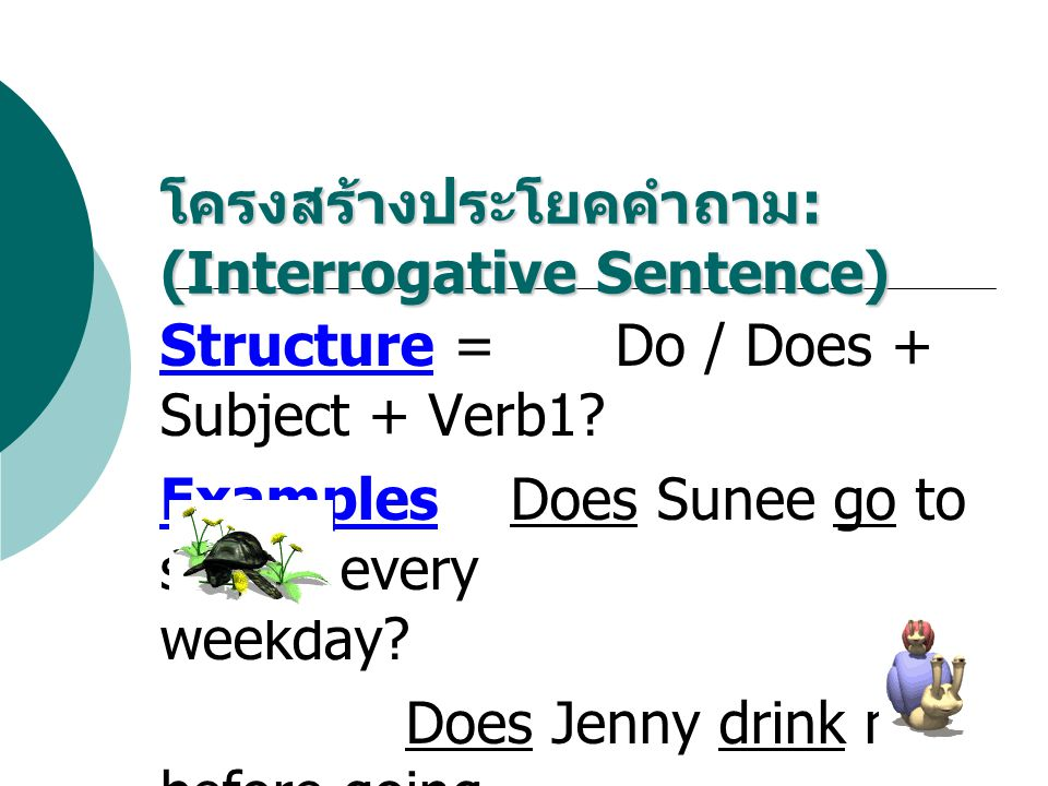 Structure = Do / Does + Subject + Verb1? Examples Does Sunee go to school every weekday? Does Jenny drink milk before going to bed? โครงสร้างประโยคคำถ