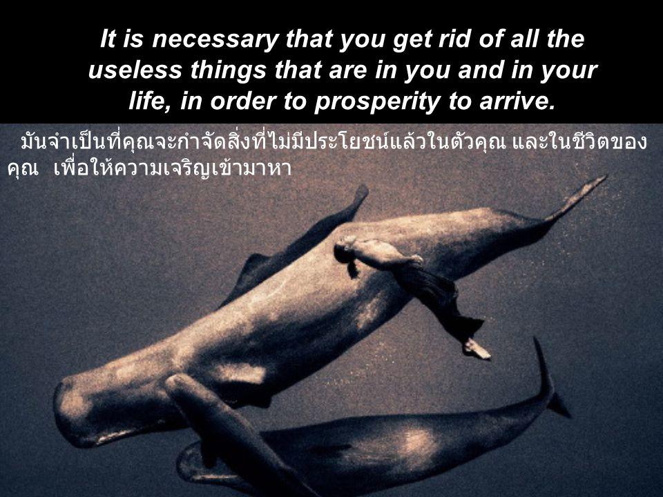 มันจำเป็นที่คุณจะกำจัดสิ่งที่ไม่มีประโยชน์แล้วในตัวคุณ และในชีวิตของ คุณ เพื่อให้ความเจริญเข้ามาหา It is necessary that you get rid of all the useless things that are in you and in your life, in order to prosperity to arrive.