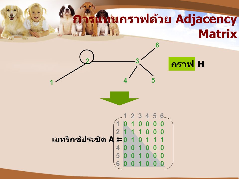1 2 3 4 5 6 1 2 3 4 5 6 1 23 45 6 กราฟ H เมทริกซ์ประชิด A = 0 1 0 0 0 0 1 1 1 0 0 0 0 1 0 1 1 1 0 0 1 0 0 0 ก ารแทนกราฟด้วย Adjacency Matrix