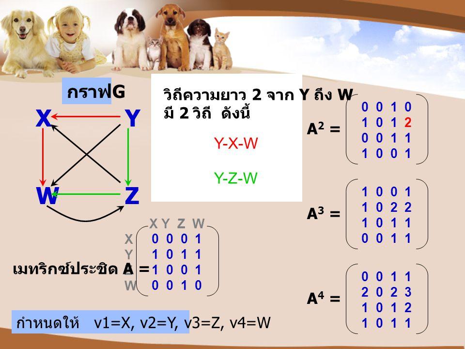 X Y Z W X Y Z W กราฟ G เมทริกซ์ประชิด A = 0 0 0 1 1 0 1 1 1 0 0 1 0 0 1 0 XY WZ กำหนดให้ v1=X, v2=Y, v3=Z, v4=W 0 0 1 0 1 0 1 2 0 0 1 1 1 0 0 1 A 2 =