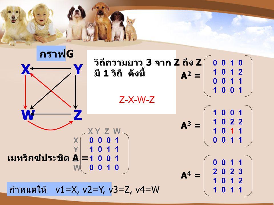 กราฟ G XY WZ X Y Z W X Y Z W เมทริกซ์ประชิด A = 0 0 0 1 1 0 1 1 1 0 0 1 0 0 1 0 กำหนดให้ v1=X, v2=Y, v3=Z, v4=W Z-X-W-Z วิถีความยาว 3 จาก Z ถึง Z มี 1