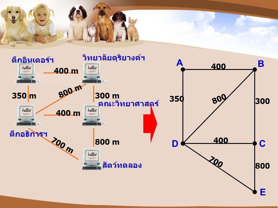 A B C E D ตึกอินเตอร์ฯ วิทยาลัยดุริยางค์ฯ คณะวิทยาศาสตร์ สัตว์ทดลอง ตึกอธิการฯ 400 m 350 m300 m 800 m 400 m 700 m 400 800 350 300 400 800 700