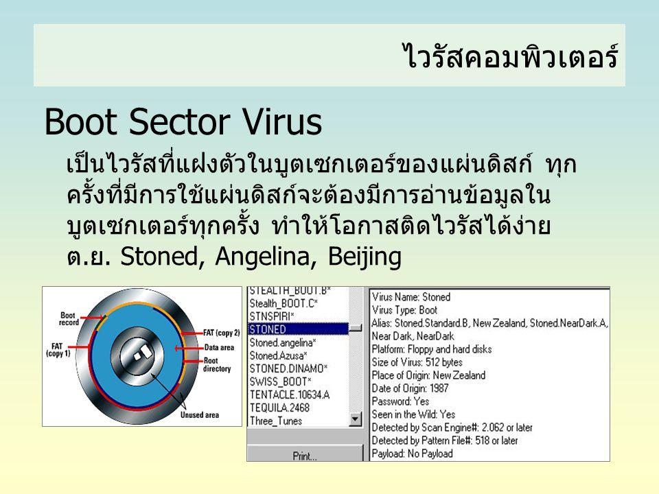 ไวรัสคอมพิวเตอร์ Boot Sector Virus เป็นไวรัสที่แฝงตัวในบูตเซกเตอร์ของแผ่นดิสก์ ทุก ครั้งที่มีการใช้แผ่นดิสก์จะต้องมีการอ่านข้อมูลใน บูตเซกเตอร์ทุกครั้