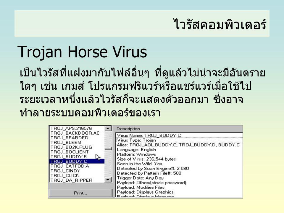 ไวรัสคอมพิวเตอร์ Trojan Horse Virus เป็นไวรัสที่แฝงมากับไฟล์อื่นๆ ที่ดูแล้วไม่น่าจะมีอันตราย ใดๆ เช่น เกมส์ โปรแกรมฟรีแวร์หรือแชร์แวร์เมื่อใช้ไป ระยะเ