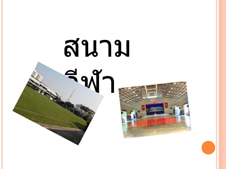 สนาม กีฬา