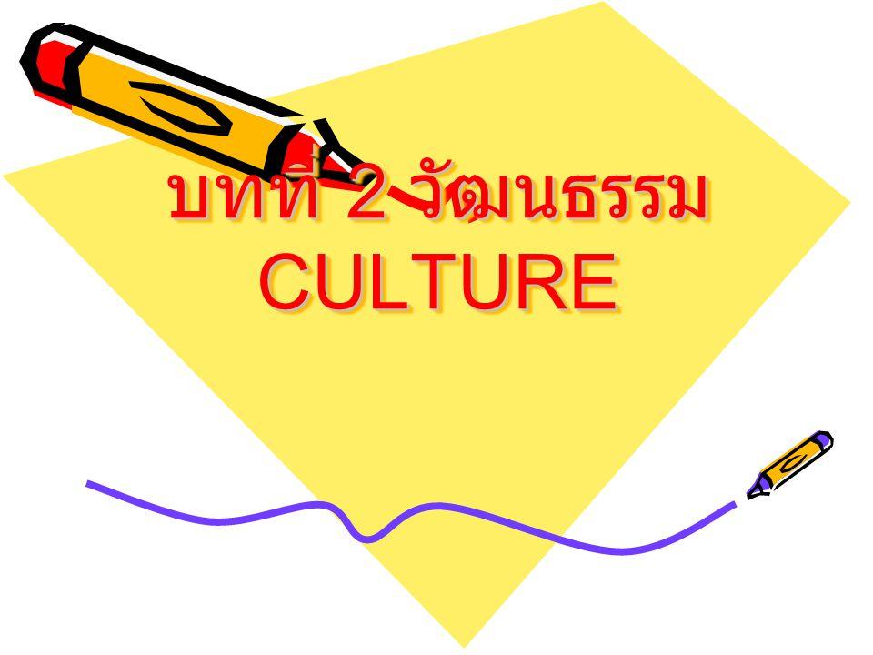 ความหมายของ วัฒนธรรม ในความหมายของนักสังคมศาสตร์ จะหมายถึงระบบความคิด ค่านิยม ความรู้ บรรทัดฐาน และเทคโนโลยี ที่มีอยู่ ร่วมกันในสังคม ๆ หนึ่ง วัฒนธรรมจึงมี ความแตกต่างกันไปในแต่ละสังคม วัฒนธรรมไม่ได้เกิดขึ้นในตัวเราเอง เหมือนการจาม การหายใจ แต่เป็นสิ่งที่ เราต้องเรียนรู้จากครอบครัว เพื่อน ชุมชน หนังสือพิมพ์ วิทยุ โทรทัศน์ ทุก ๆ สิ่งที่เราสัมผัสหรือติดต่อด้วย