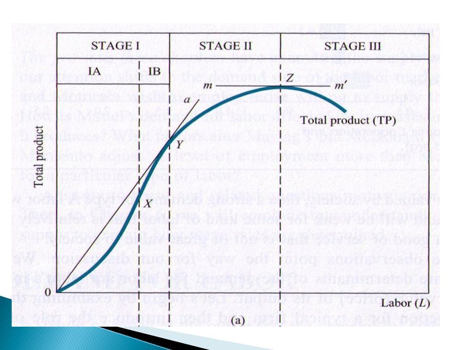  MP ของแรงงานคือ ความชันของเส้น total product ◦ อัตราการเปลี่ยนในผลผลิต เมื่อคนงานถูกจ้าง เข้ามาเพิ่มขึ้น ◦ ในระยะแรกผลผลิตจะขยายตัวด้วยอัตราที่ เพิ่มขึ้น เพราะ.....
