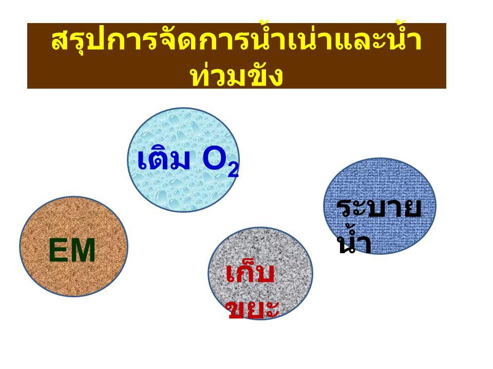 สรุปการจัดการน้ำเน่าและน้ำ ท่วมขัง EM เติม O 2 เก็บ ขยะ ระบาย น้ำ
