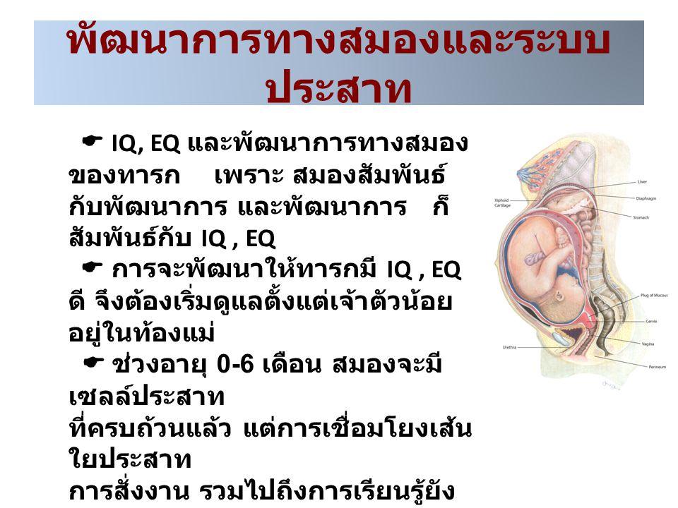 พัฒนาการทางสมองและระบบ ประสาท  IQ, EQ และพัฒนาการทางสมอง ของทารก เพราะ สมองสัมพันธ์ กับพัฒนาการ และพัฒนาการ ก็ สัมพันธ์กับ IQ, EQ  การจะพัฒนาให้ทารก