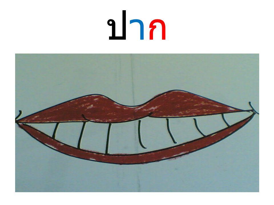 ปากปาก