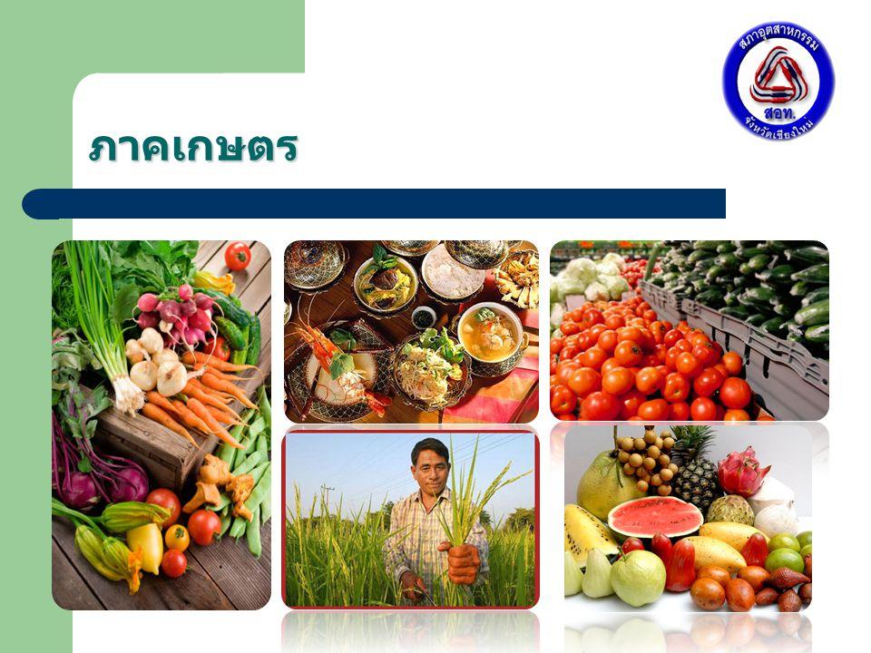 ภาคเกษตร พื้นที่เพาะปลูก 3.14 ล้านไร่ คิดเป็น 10.08 % ของพื้นที่ กลุ่มจังหวัด พื้นที่ที่ได้รับน้ำจากชลประทาน 2,347,531 ไร่ คิดเป็น 73.04 % ของพื้นที่การเกษตร ที่มา : สำนักงานคณะกรรมการพัฒนาการเศรษฐกิจและสังคมแห่งชาติและ สำนักงานเศรษฐกิจการเกษตร ปี 2550 ข้าวลำไยอ้อยถั่วกระเทีย ม หอมแด ง ข้าวโพ ด