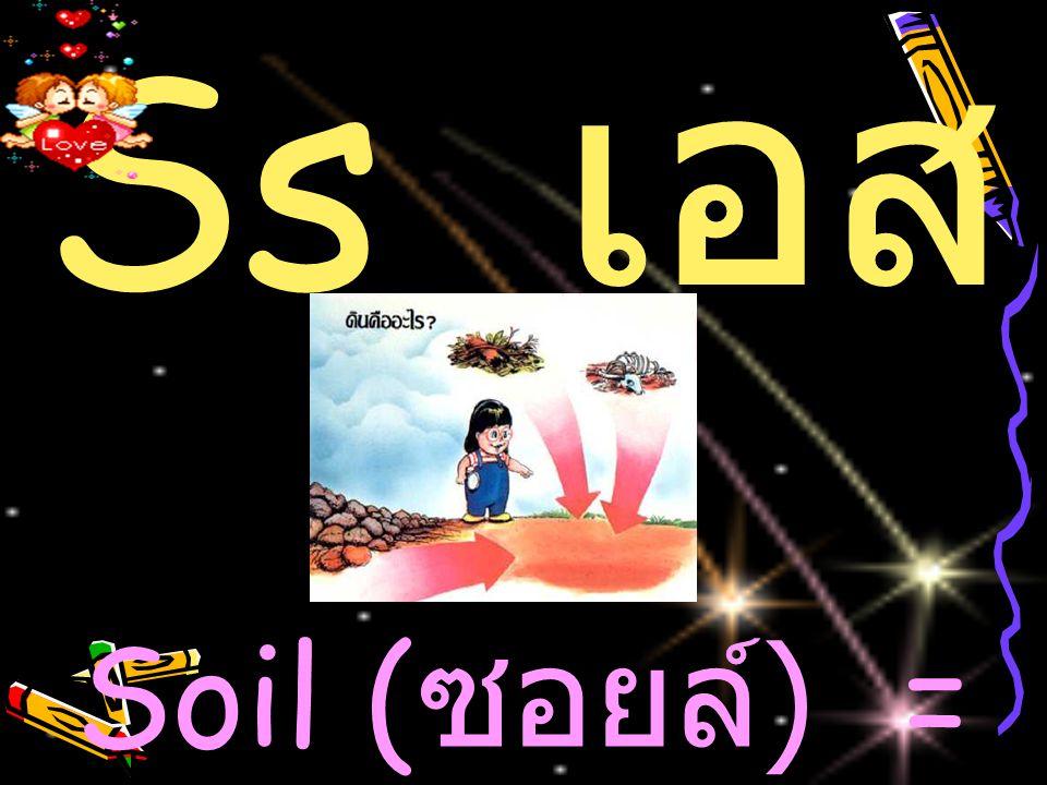 Ss เ อส Soil ( ซอยล์ ) = ดิน