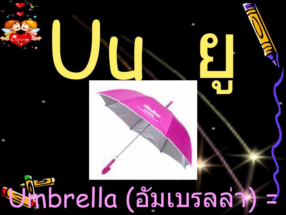 Uu ย ู Umbrella ( อัมเบรลล่า ) = ร่ม